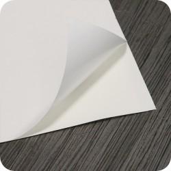SACHET PLASTIQUE ZIP 50 MICRONS 60 x 230 mm par 1000