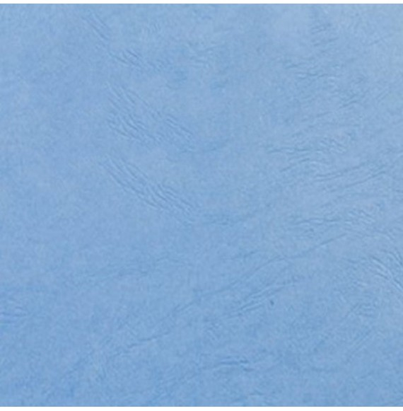 Couverture grain cuir bleu France  250G A4/A3